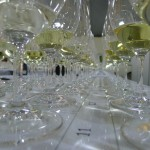 AWAC 30 white glasses