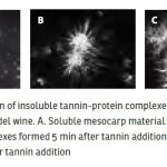 insoluble-tannin-protein