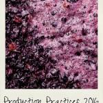 practices-360px