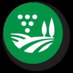 grape production icon – green