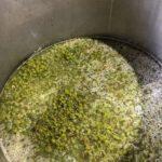 Amber ferment