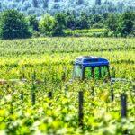tractor vineyard