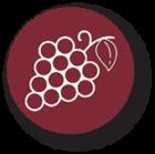 Grapevine varieties